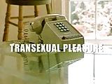 Transsexual Pleasure