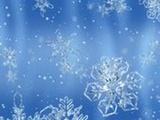 SNOWED IN -THE 2010 DC B ...
