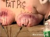 Fat Pig Tit Torture - Tit torture Videos
