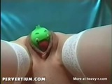 Bird Toy Pushing Out - Toys Videos